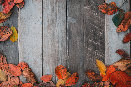 Autumn leaves over old wooden background with copy space. border frame design.