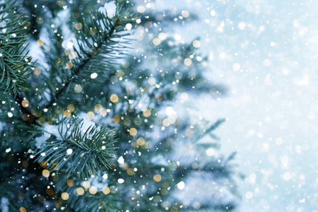 Closeup of Christmas tree with light, snow flake. Christmas and New Year holiday background.