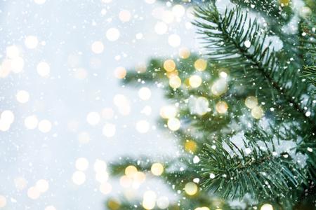 Gros plan du sapin de Noël avec lumière, flocon de neige.