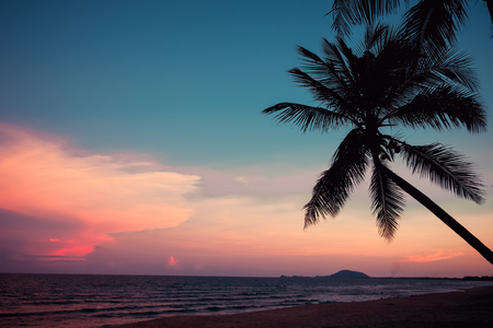 Silhouette of tropical beach during sunset twilight. seascape of summer beach and palm tree at sunset. vintage color tone