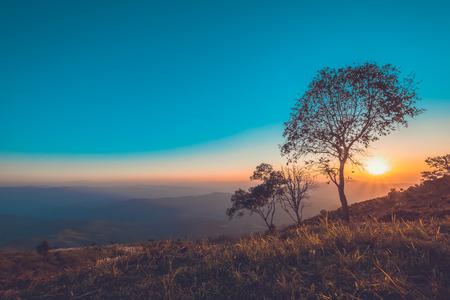 vintage landscape mountain at sunset. nature background