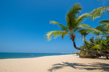 Beautiful tranquil scenery of tropical landscape sea view and palm tree on sand beach. Travel inspirational, Summer holiday and vacation concept for tourism relaxing.