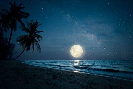Piękna fantazja krajobrazowej tropikalnej plaży z sylwetką palmy na nocnym niebie i pełni księżyca - zjawiskowa cudowna natura.