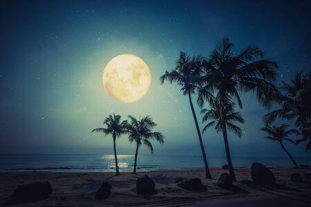 Scène de nuit romantique - belle plage tropicale fantastique avec étoile et pleine lune dans le ciel nocturne.