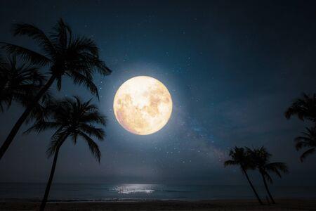 Romantic night scene - beautiful fantasy tropical beach with star and full moon in night skies. Фото со стока