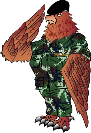 hostilities: Soldier Eagle Stock Photo