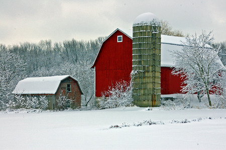 Red Barn in White Snowy Field in Wisconsin