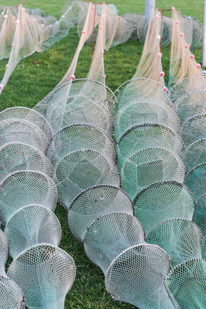 fishing industries: Fishing nets on land grass