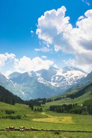 romantic countryside in austria photo