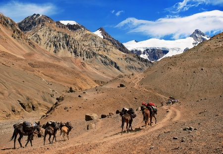 horcones: trekking in south america Stock Photo