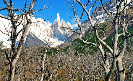 campo de hielo sur: wilderness as seen with cerro torre in the glacier national park, patagonia, argentina.