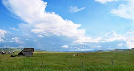 cloudy blue sky over a green grass field photo