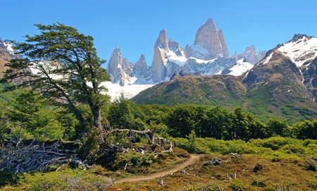 campo de hielo sur: beautiful nature landscape in patagonia