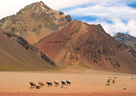 campo de hielo sur: beautiful mountain landscape with group of horses in front as seen in the wilderness of argentina, south america.
