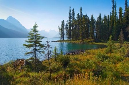 beautiful morning mood by the lake as seen in the wilderness of banff national park, alberta, canada. Stock Photo
