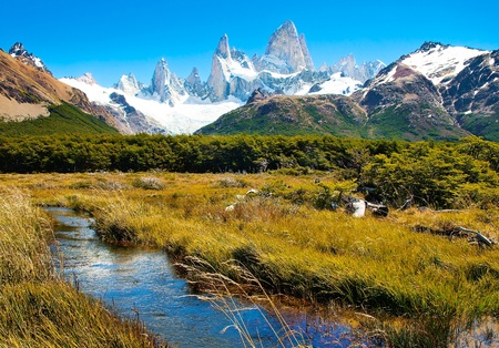plateau of flowers: Beautiful Nature Landscape in Los Glaciares National Park, Patagonia, Argentina.
