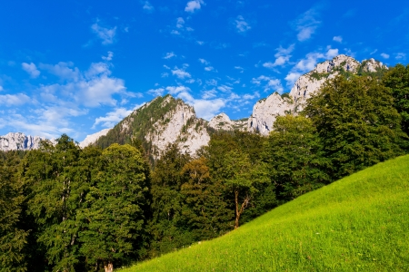 Scenic view of natural landscape in Berchtesgadener Land, Bavaria, Germany Stock Photo - 14256863