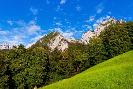 Scenic landscape in Berchtesgadener Land, Bavaria, Germany Stock Photo - 14383106