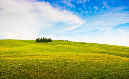 val d      orcia: Scenic Tuscany landscape in Val d Orcia, Italy