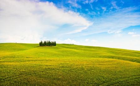 val dorcia: Scenic Tuscany landscape in Val d Orcia, Italy