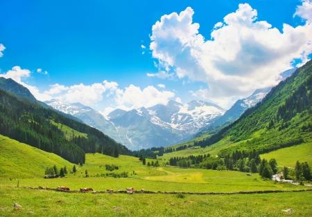 prato montagna: Bel paesaggio con le Alpi in Nationalpark Hohe Tauern, Salisburgo, Austria Archivio Fotografico