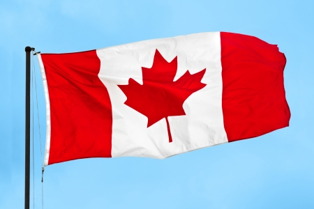 Canadian flag waving in the wind on a clear blue sky