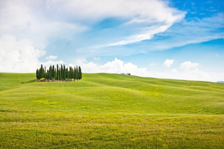 Beautiful Tuscany landscape in Val d Orcia, Italy photo