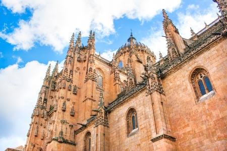 Cathedral of Salamanca, Castilla y Leon, Spain photo