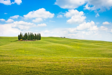 Beautiful landscape in Tuscany, Italy photo