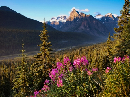 Beautiful landscape with Rocky Mountains at sunset in Banff National Park, Alberta, Canada Stock Photo