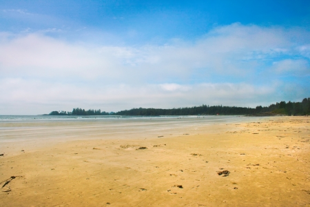 vancouver island: Long Beach near Tofino on Vancouver Island, British Columbia, Canada