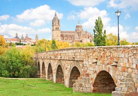 castilla: Beautiful view of the historic city of Salamanca with New Cathedral and Roman bridge, Castilla y Leon region, Spain