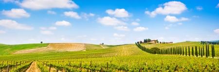 Panoramisch uitzicht over schilderachtige Toscaanse landschap met wijngaarden in de regio Chianti, Toscane, Italië Stockfoto