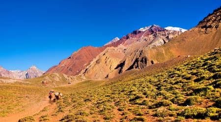 mendoza: Panoramic view of a group of hikers trekking in the Andes, Argentina, South America