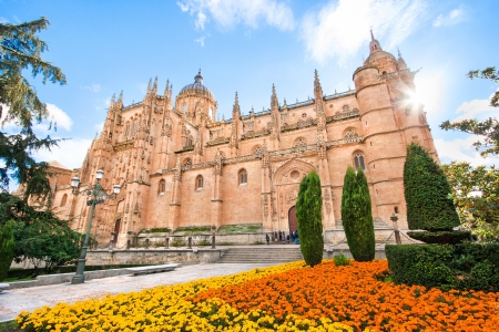 castile leon: Beautiful view of Cathedral of Salamanca, Leon region, Spain