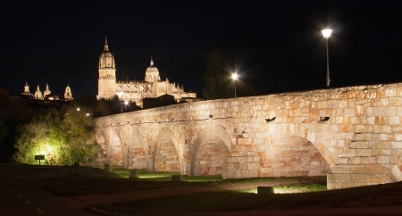 leon: Beautiful view of the historic city of Salamanca with New Cathedral and Roman bridge, at night, Castilla y Leon region, Spain