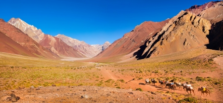 Panoramic view of a group of hikers trekking in the Andes, Argentina, South America photo