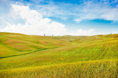 Beautiful view of scenic Tuscany landscape in Val d Orcia, Tuscany, Italy photo