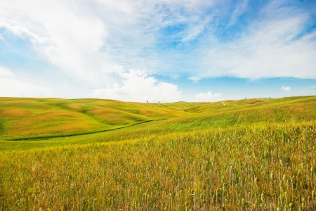 Beautiful view of scenic Tuscany landscape in Val d Orcia, Italy photo