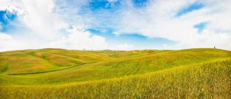 Panoramic view of rolling hills in Val d Orcia, Tuscany, Italy photo