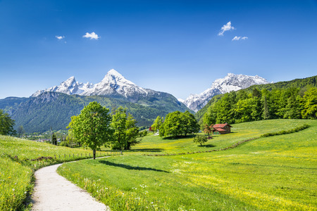 Idyllic summer landscape in the Alps, Nationalpark Berchtesgadener Land, Bavaria, Germany Stock Photo
