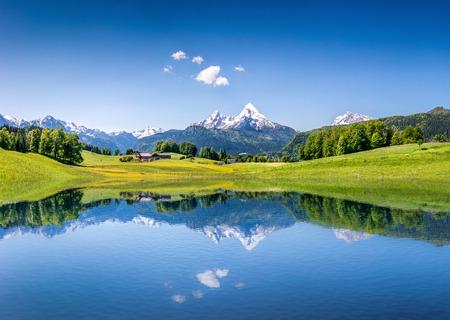 Paysage idyllique d'été avec le lac de la montagne dans les Alpes