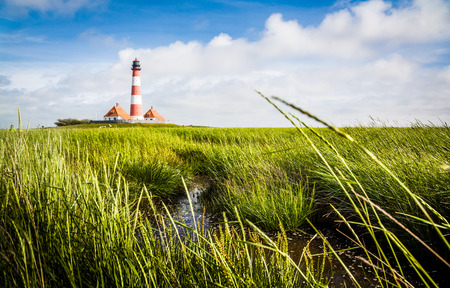 westerheversand: Beautiful landscape with lighthouse at North Sea in Nordfriesland, Schleswig-Holstein, Germany