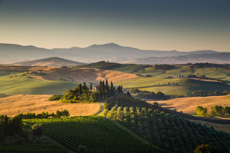 Scenic Tuscany landscape with rolling hills and valleys in golden morning light, Val d Orcia, Italy photo