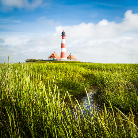 westerheversand: Beautiful landscape with lighthouse in the background at North Sea in Nordfriesland, Schleswig-Holstein, Germany
