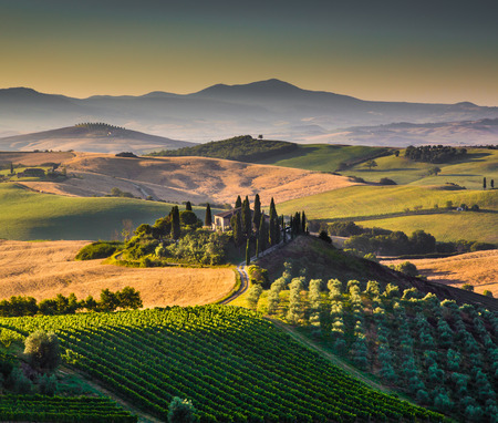 tuscan house: Scenic Tuscany landscape with rolling hills and valleys in golden morning light Stock Photo