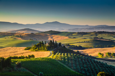 wine road: Scenic Tuscany landscape with rolling hills and valleys in golden morning light, Val d\