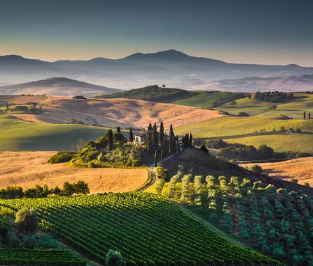 なだらかな丘と谷ゴールデン朝ライト、ヴァル d Orcia、イタリアの風光明媚なトスカーナの風景
