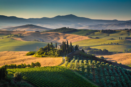 Scenic Tuscany landscape with rolling hills and valleys in\ golden morning light, Val d Orcia, Italy