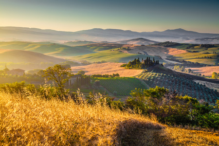 wine road: Scenic Tuscany landscape with rolling hills and harvest fields in golden morning light, Val d Orcia, Italy Stock Photo